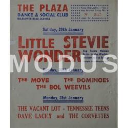 Little Stevie Wonder
