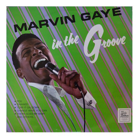 Marvin Gaye, 'In The Groove'